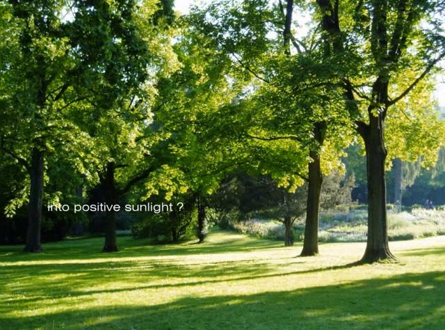 atmosfera luminosa sole beltempo soleggiato estiva